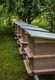 Abejas en colmenas grises en un día soleado en el jardín imágenes de archivo libres de regalías