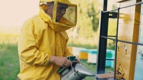 Abejas que fuman del hombre joven del apicultor lejos de la colmena en colmenar Fotografía de archivo