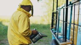Abejas que fuman del hombre joven del apicultor lejos de la colmena en colmenar Imagen de archivo