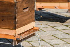 Abejas que vuelan alrededor de una caja de madera de la colmena Foto de archivo libre de regalías