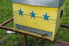 Abejas que vuelan delante de la entrada de la colmena Imagen de archivo