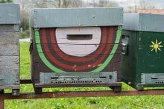 Abejas que vuelan delante de la entrada de la colmena Foto de archivo libre de regalías