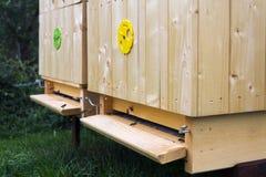 Abejas que vuelan en colmena de madera el día soleado Fotos de archivo libres de regalías