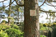 Abejas rojas y blancas activas en esta señal de peligro del área en un árbol Imágenes de archivo libres de regalías
