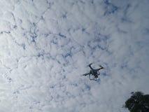 Abejón y cielo nublado blanco Imagenes de archivo