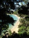 abel krajowy nowy parkowy tasman Zealand zdjęcie royalty free