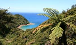 Abel Tasman Bay Royalty-vrije Stock Afbeelding