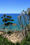 Abel Tasman Royalty Free Stock Photography