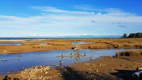 Abel Tasman National Park-gezichtspuntbeeld royalty-vrije stock afbeeldingen