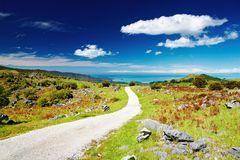 Abel Tasman National Park, Nieuw Zeeland Royalty-vrije Stock Afbeelding