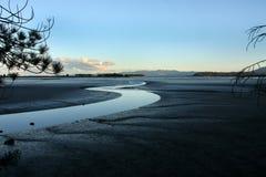 Abel Tasman National Park Nya Zeeland, södra ö Royaltyfri Bild