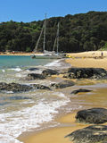 Abel Tasman nationalpark Nya Zeeland Royaltyfria Bilder