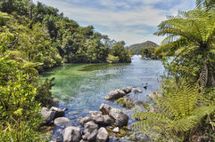 Abel Tasman natural park, New Zealand Stock Image