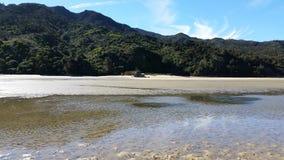 Abel Tasman Park durante la bajamar fotografía de archivo libre de regalías