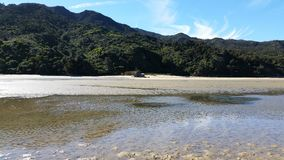 Abel Tasman Park at low tide Royalty Free Stock Photography
