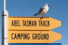 Abel Tasman Track-Zeichen mit rot-berechneter Seemöwe Stockbild