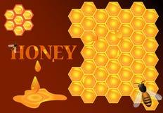 Abelha, mel, favo de mel. Foto de Stock