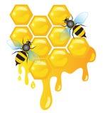 Abelhas de trabalhador em pilhas do mel com gotejamento do mel Fotografia de Stock Royalty Free