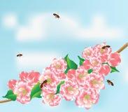 Abelhas e filial ilustração royalty free