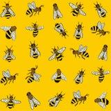 Abelhas no fundo amarelo Imagem de Stock Royalty Free