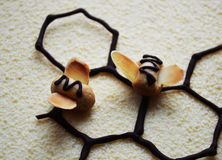 Abelhas no velor do chocolate Fotografia de Stock
