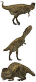 Abelisaurus Royalty Free Stock Image
