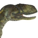 Abelisaurus Dinosaur Head. Abelisaurus was a carnivorous theropod dinosaur that lived in the Cretaceous Period of Argentina vector illustration