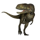 Abelisaurus dinosaur - 3D render. Abelisaurus dinosaur roaring isolated in white background - 3D render Royalty Free Stock Photos