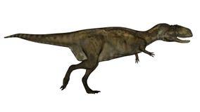 Abelosaurus dinosaur - 3D render. Abelosaurus dinosaur running isolated in white background - 3D render Royalty Free Stock Photos
