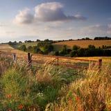 Abend auf Cranborne Verfolgung, Dorset, Großbritannien Lizenzfreie Stockbilder