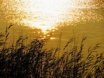 Am Abend auf dem See Stockfotos
