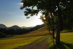 Abend in den Alpen Lizenzfreies Stockbild