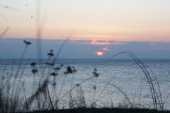 Abend-Landschaftsmeer Stockfotografie
