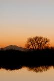 Abend-Schattenbild lizenzfreies stockbild