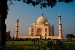 Abend Taj Mahal Sonnenuntergang gestaltet von Tree stockfotos