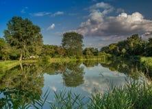 Abend-Teich-Reflexion Lizenzfreie Stockbilder