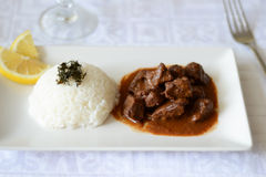 Abendessen mit Reis und Rindereintopf Stockfotografie