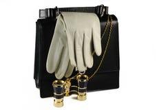 Abendfrauenbeutel mit Paaren der ledernen Handschuhe Stockfotografie