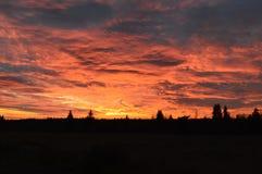 Abendhimmel über dem Feld Lizenzfreies Stockfoto