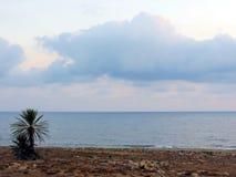 Abendhimmel über der Küste von Zypern Lizenzfreies Stockbild