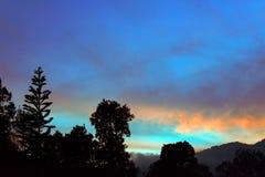 Abendhimmel mit Baumgrenze Stockfotografie