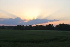Abendlandschaft des Feldes und der Wolken Stockfotos