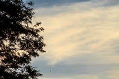 Abendlandschaft mit kontrastierenden Sonnenunterganghimmeln Stockfotos