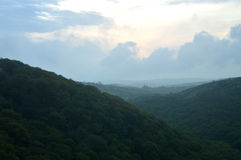 Abendlicht über bewaldetem Tal Stockfotografie