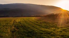Abendsonnenstrahlen auf einer Landschaft Stockbilder