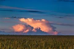 Abendwolken in der Landschaft in der Tschechischen Republik Lizenzfreies Stockfoto