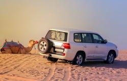 Abenteuer-Antrieb nicht für den Straßenverkehr 4x4, Kamelsafari auf Sanddünen auf dem d Lizenzfreies Stockbild