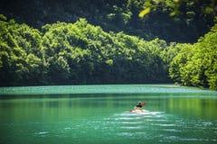 Abenteurer, der am ruhigen See allein Kayak fährt Stockfotografie