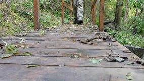 Abenteurer geht über die Brücke im Wald hinaus stock footage