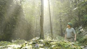 Abenteurer geht Dschungel stock video